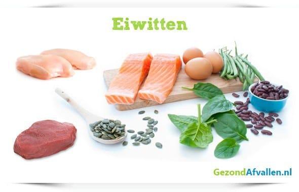 eiwitrijk-voedsel