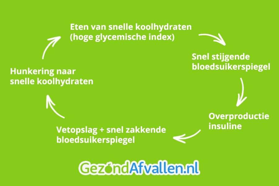 glucose en insuline vetpslag vicieuze cirkel