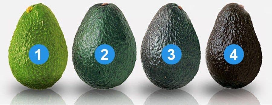 onrijpe rijpe avocados