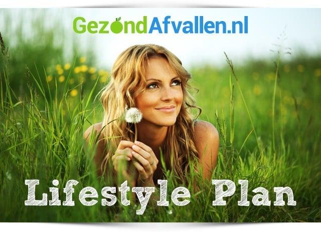 gezond-afvallen-lifestyle-plan