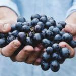 het meest gezonde stukje fruit